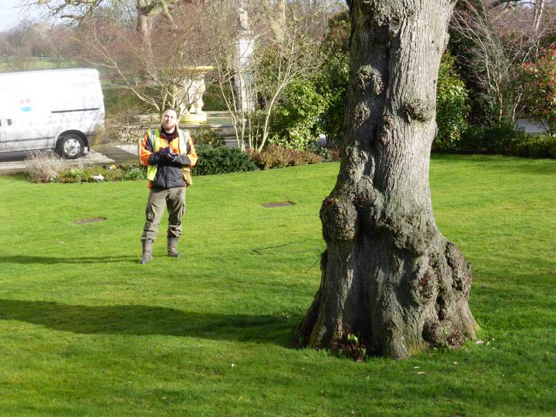 Jon Hartley Surveying Trees With Trimble Juno