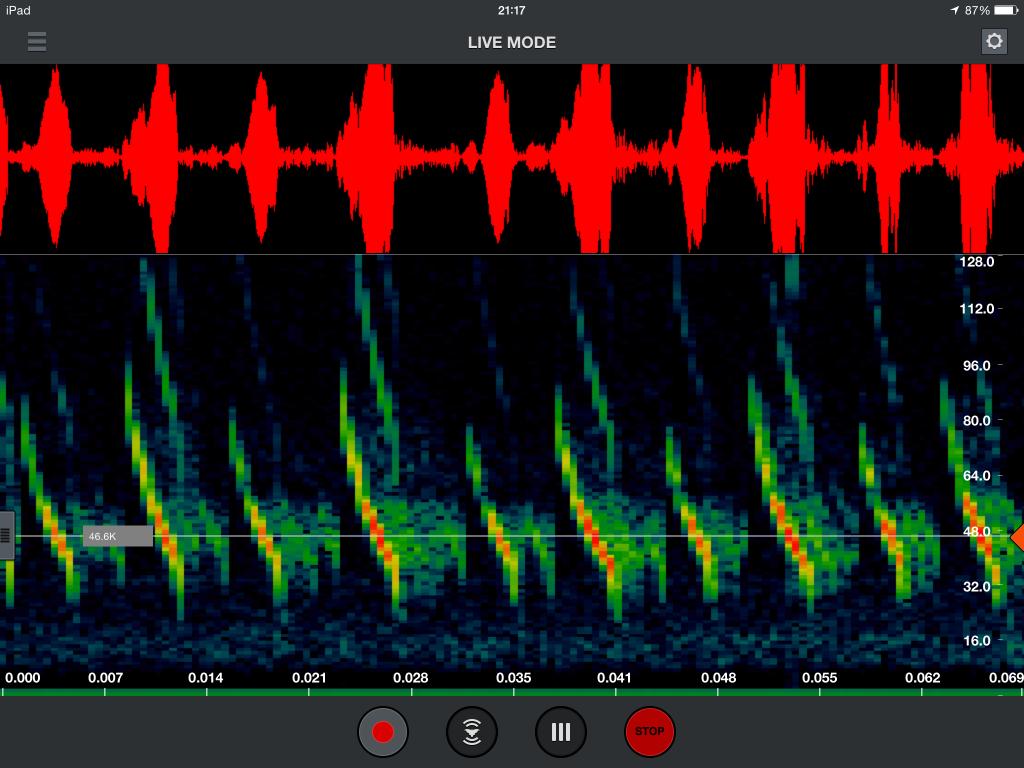 Arbtech Echo Meter Touch Myotis