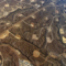 Economy vs Ecology: The Fracking Debate