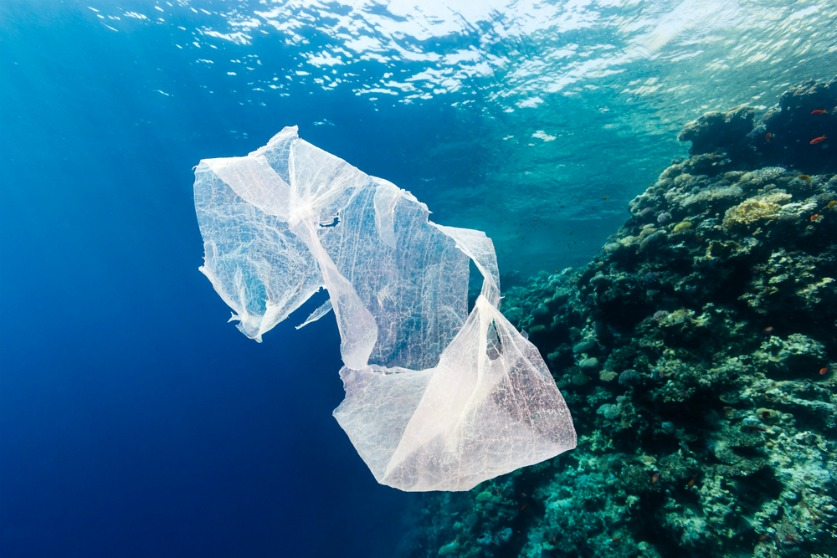 Ocean plastics have become a huge environmental issue. Lucy Siegle explains why for Arbtech.