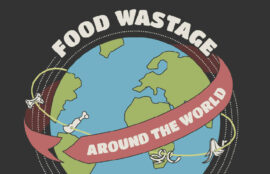 Food Wastage Around The World Infographic
