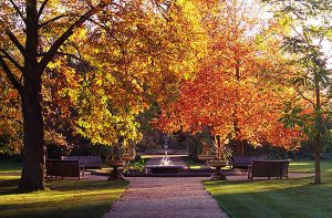 oxford-botanic-garden
